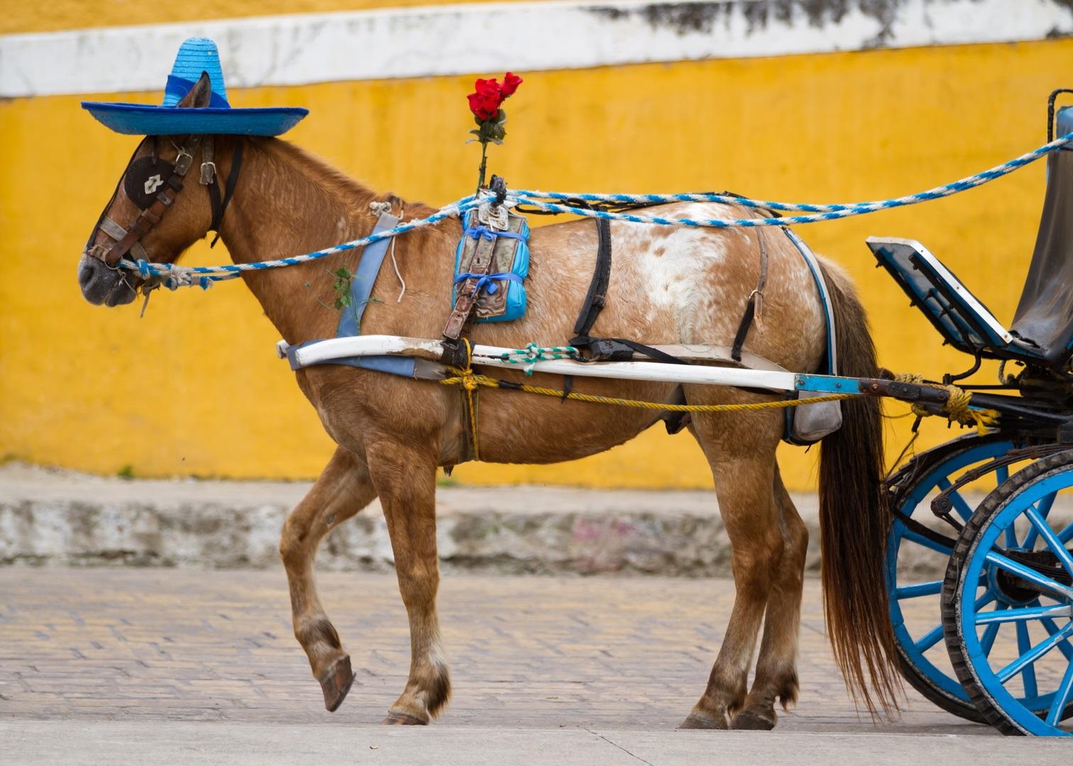 Изготовление телег для лошади своими руками 44
